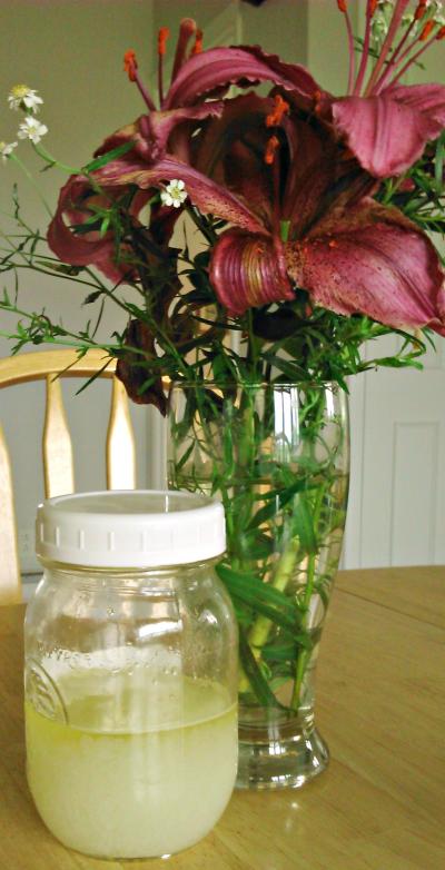 Exfoliant huileux au sels et menthe poivrée